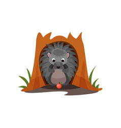 cute hedgehog sitting in hollow of tree vector image
