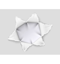Torn paper and foil vector image