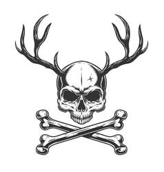 vintage monochrome skull with deer horns vector image