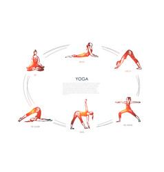 Yoga - sit bend arch his arms sag tip over vector