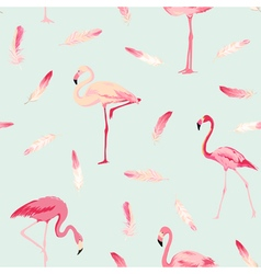 Flamingo Bird Background Flamingo Feather vector image vector image