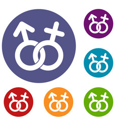 Gender symbol icons set vector
