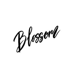 Blossom spring concept lettering vector