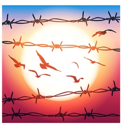 barbed wire and flying birds vector image