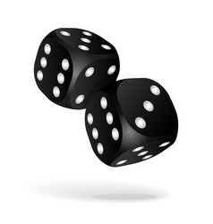 black dice with white pips on the white background vector image