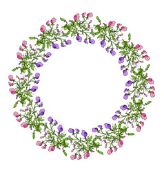 sweet pea wreath vector image