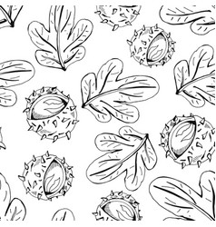 chestnut pattern vector image