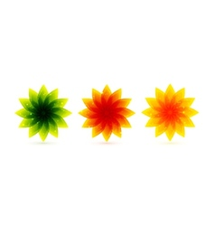 color flower icons vector image