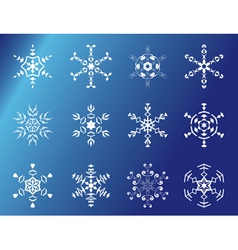 set of 12 snowflakes vector image