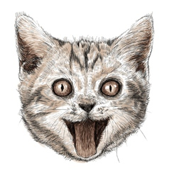Smiling cat 01 vector image