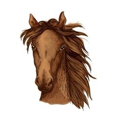 Beautiful brown horse portrait vector image vector image