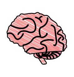 brain cartoon shadow vector image