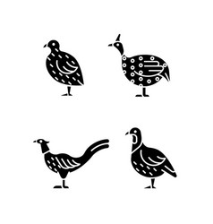Landfowl black glyph icons set on white space vector