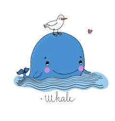 Little pretty whale and seagull vector image