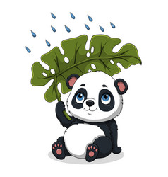 Panda sitting under palm leaf vector