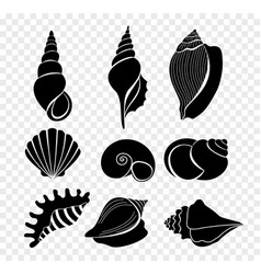 Set of seashells silhouettes vector