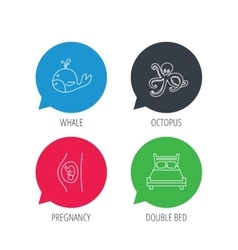 Whale octopus and double bed icons vector image