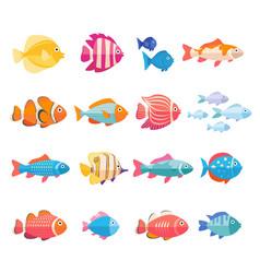 colorful aquarium fish set isolated vector image