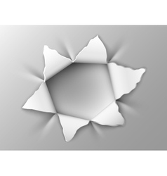 hole in steel plate vector image