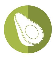 avocado harvest nutrition icon shadow vector image