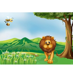 A lion and a flying bee at the hills vector image