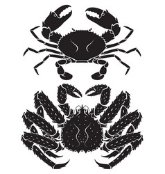 alaskan king crab vector image
