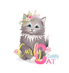 Animal abc alphabet letter c cat cartoon for kids vector
