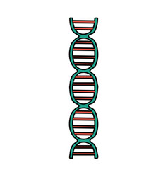 Dna strand icon image vector