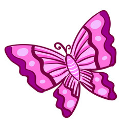 pink butterfly on white background vector image