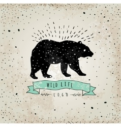 Vintage label bear Design for T-Shirt handmad vector image