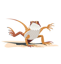 Kung fu of the bearded dragon vector