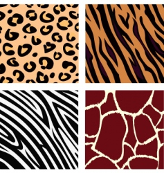 animal patterns vector image vector image