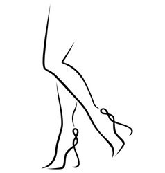 Abstract graceful women legs vector