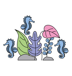 aquarium seahorses plants on white background vector image