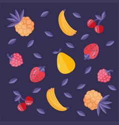 Baban strawberry raspberry cherry pear pineapple vector