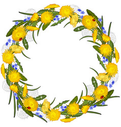floral wreath dandelions and flowers isolated vector image