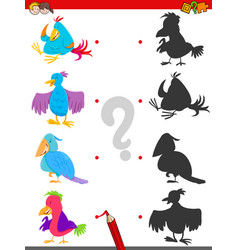 Match shadows activity with bird characters vector