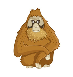 Orangutan monkey isolated wild brown ape vector