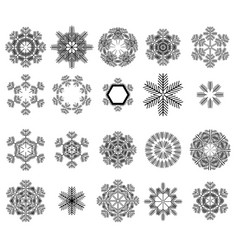 set of different winter snowflakes vector image