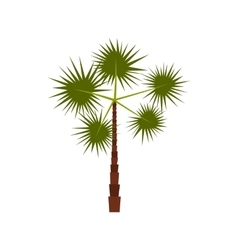 Spiny tropical palm tree icon flat style vector