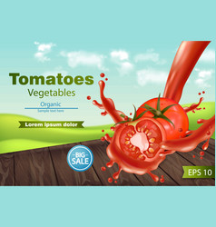 tomatoes slice splash realistic green eco vector image