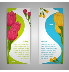 Tulip flowers banners vector image