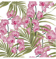 with exotic pink orchid flowers and palm leaves vector image