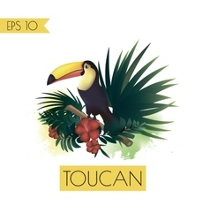 toucan and tropical plants vector image vector image