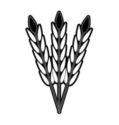 wheat harvest food vector image vector image
