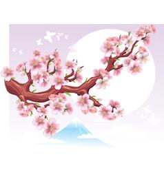 flowering branch of sakura in the sun vector image