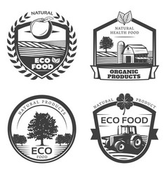 vintage natural healthy emblems collection vector image