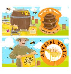 beekeeping farm honey banner vector image