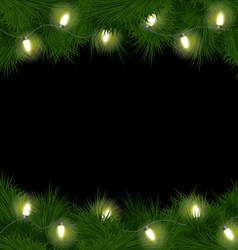 Christmas lights on pine isolated on black vector