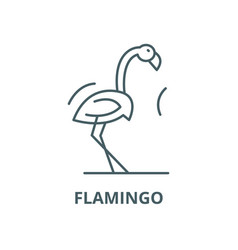 flamingo line icon linear concept outline vector image
